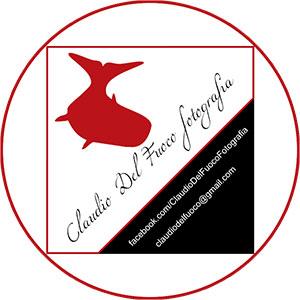 logo-Claudio-Del-Fuoco